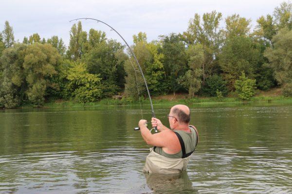 Спиннинг для ловли сома