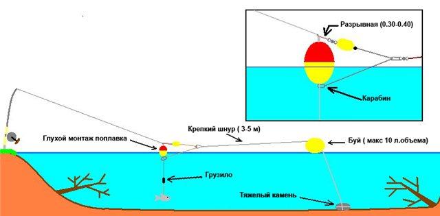 Прибрежный коряжник